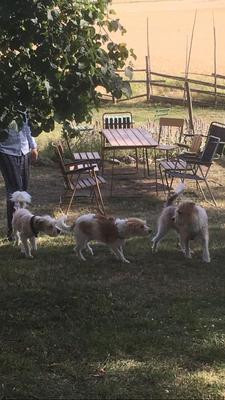 Kuling, Agnes & Opa Figo