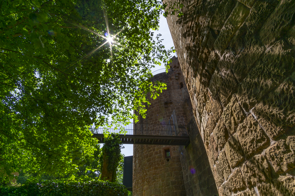 Burgruine Montclair