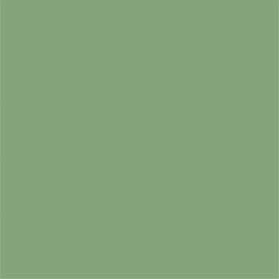 Ral 6021 - Bleekgroenkopie