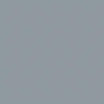 Ral 7001 - Zilvergrijs