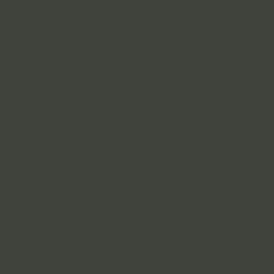Ral 6006 - Grijs olijfgroen
