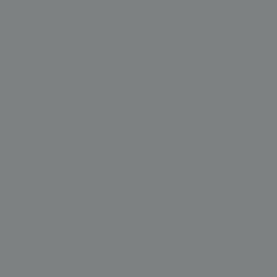 Ral 9023 - Parelmoer donkergrijs