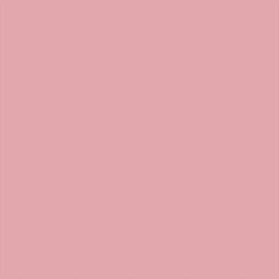 Ral 3015 - Lichtroze