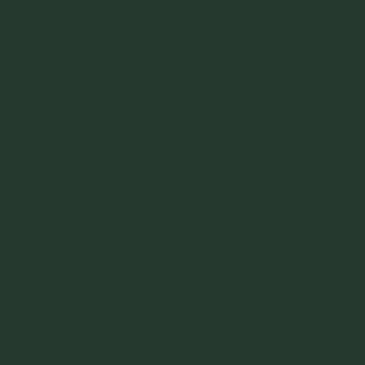 Ral 6009 - Dennengroen