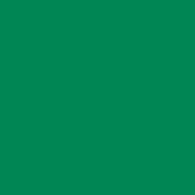 Ral 6024 - Verkeersgroen