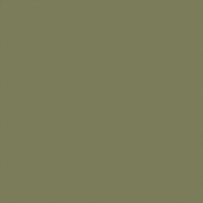 Ral 6013 - Rietgroen