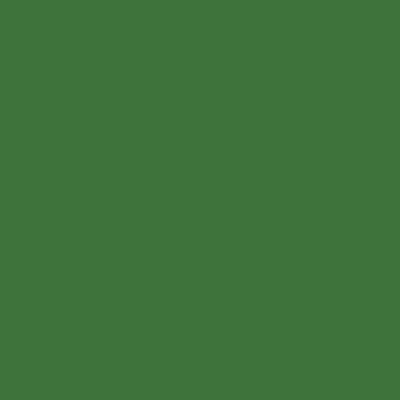 Ral 6010 - Grasgroen