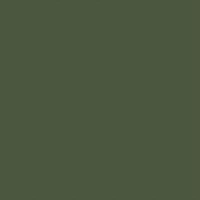 Ral 6003 - Olijfgroen