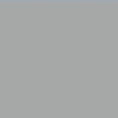 Ral 9006 - Blank aluminium