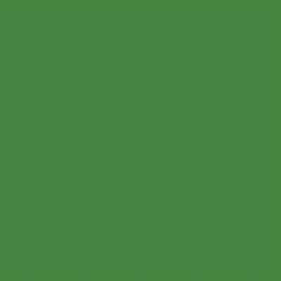 Ral 6017 - Meigroen