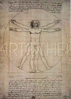 23605 - Proportionszeichnung nach Vitruv - Leonardo da Vinci