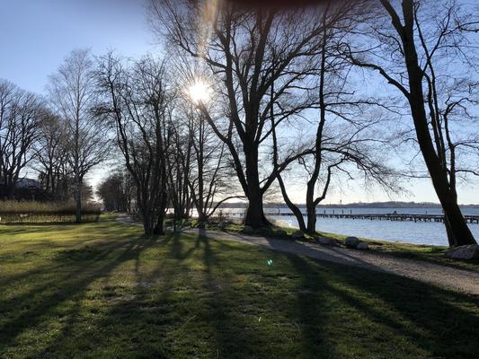 Die M-Plätze: freier Blick auf den See, die Marina (mit Ihrem Boot?) und direkt angrenzend die Hundebadestelle und der Ausgang zum Uferspazierweg in Richtung Lenz.
