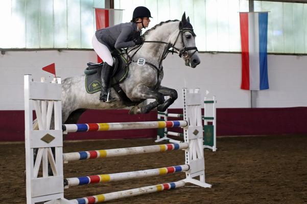 Araberturnier der IG Arabische Pferde in Westfalen 2018