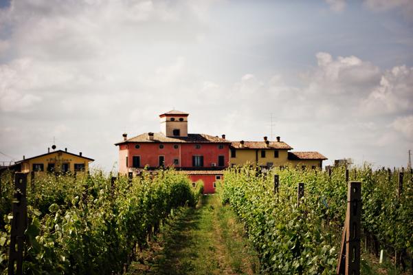Weingut kurz vor Verona