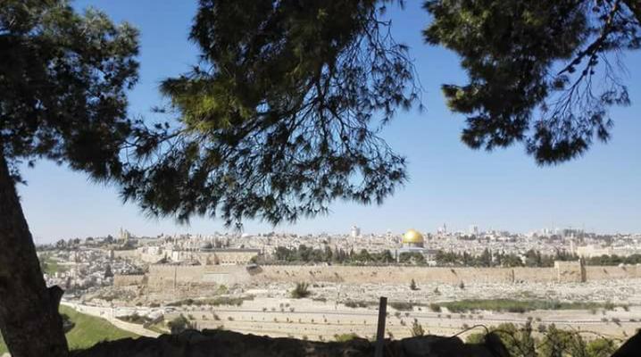 Bick auf Jerusalem