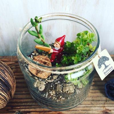 11月テラリウム ワークショップ「多肉植物のクリスマステラリウム」