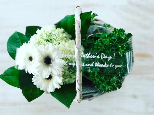 母の日ギフト2017 「フラワーアレンジメント&ハーブの鉢植」カゴSサイズ