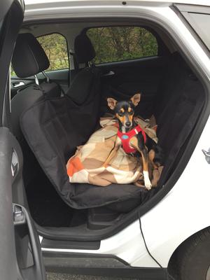 ... saß sie im Auto. Das Training hat sich ausgezahlt...