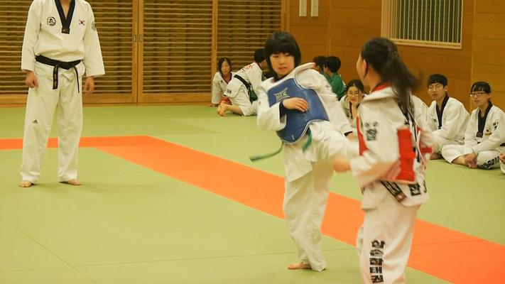 日韓親善テコンドー文化交流会 組手練習