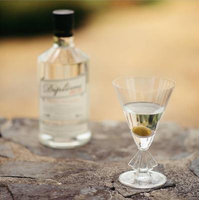 Classic Dirty Martini with Diplôme Dry Gin