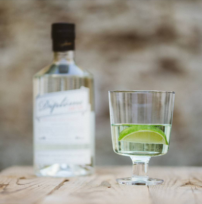 Classic Gin and Tonic with Diplôme Dry Gin