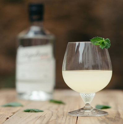 Classic Gimlet with Diplome Dry Gin
