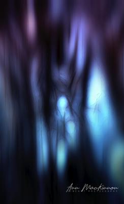 Portraitfotografie ohne Datenschutz .- Die unsichtbare Frau