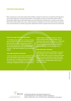Broschüre A4, Rückseite