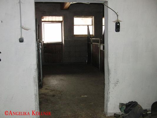 Eindrücke vom Stall des Pferdehofs. Aus diesem Raum schien der Knall zu kommen. #paranormal #ghosthunters