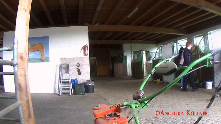 Eindrücke der Video-Überwachung des Stalls tagsüber. #Ghosthunters #paranormal #Spuk
