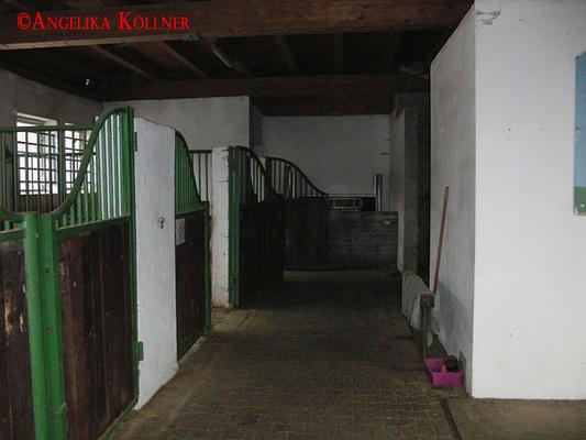Eindrücke vom Stall des Pferdehofs. #paranormal #ghosthunters