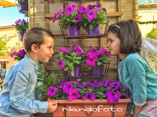 Cruz de Mayo 2016 #Salteras #flores