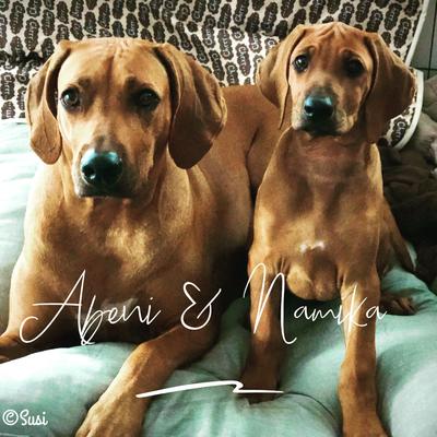 Namika & Abeni