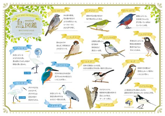 ミニ鳥図鑑
