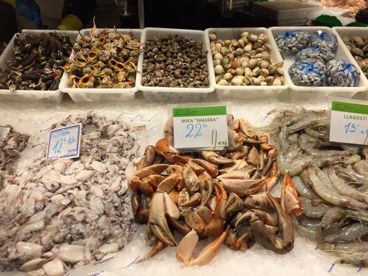 Es geht zu den Meeresfrüchten