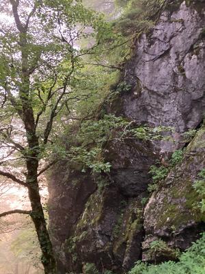 不動の岩屋