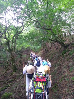 登拝道中 台風後の蒸し暑さは一番の行でした