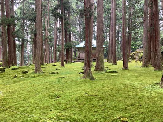 平泉寺白山神社境内 45間の拝殿があった跡