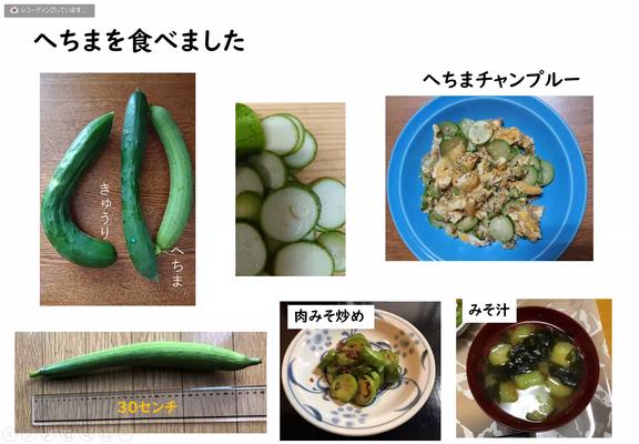 胡瓜位の大きさのヘチマを食べてみました