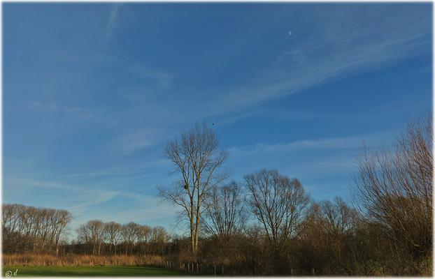 Eine Landschaft mit Blick hinauf zum Mond