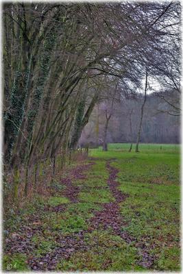 Randweg (Teil 1)