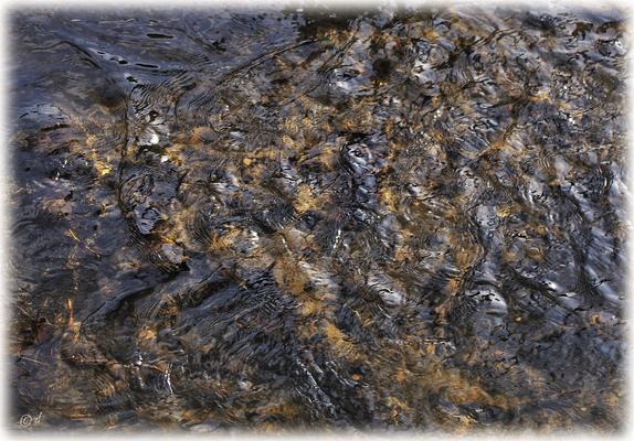 Das Gesicht & die Sprache des Bachwassers