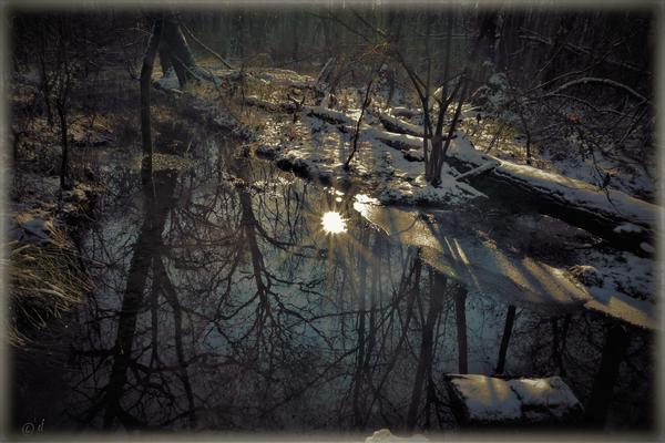 Wenn sich die Sonne auf einer kleinen Eisfläche spiegelt