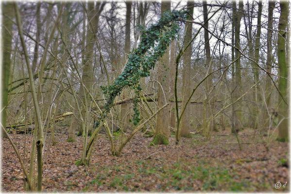 Grüner Schmuck