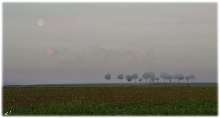 Mond, Wolken, Nebel & Land