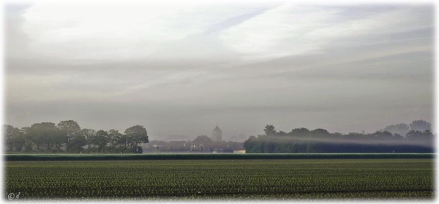 Ein nebliger Blick zum Nachbarort Havert (Selfkant)