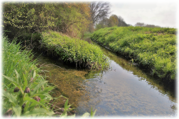Der Saeffelbach (Foto li.) mündet in den Rodebach (Foto re.)
