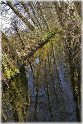 Am Wassergraben