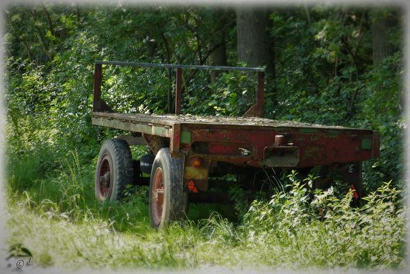 Der Karren am Waldrand