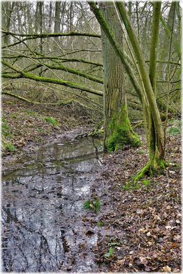 Frieden am Wassergraben